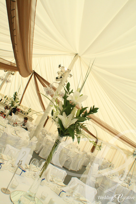 Marquee Dressing Drapes