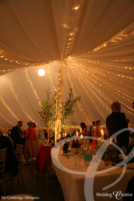 Marquee Fairy Light Roof Canopy