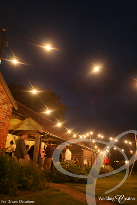 Festoon Wedding Lighting