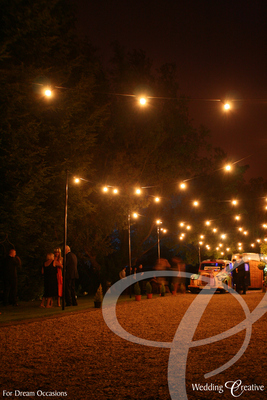 Festoon Party Lighting