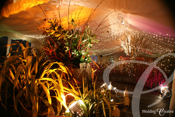 Fairy Light Wedding Ideas