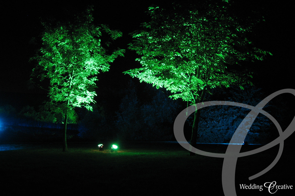 Party Grounds Lighting
